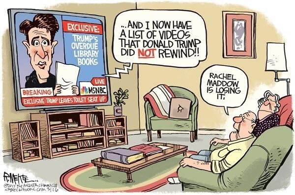 maddow cartoon 1.jpg