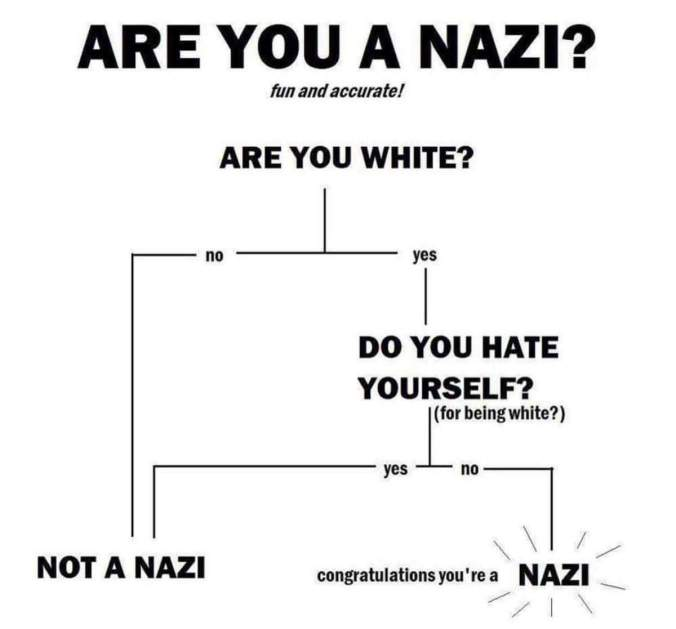 nazi flow chart.jpg