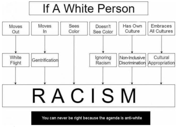 racism anti-white.jpg
